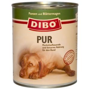 dibo-pansen-blaettermagen-png