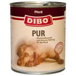 dibo-pferdl-png