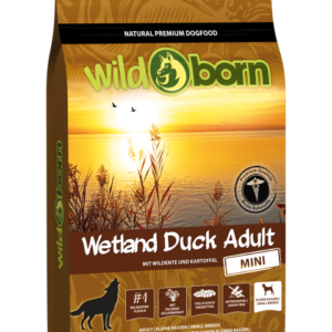 wildborn_wetland_duck1